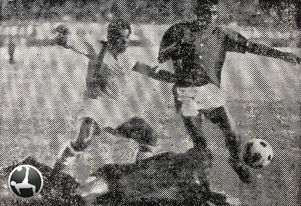 Atropellada de 'Pelé' Niño sobre el arco del golero Vargas de Mannucci, quien quedó lesionado en ese choque ante San Lorenzo de Chiclayo en 1969. (Foto: diario La Crónica)