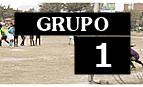Real Juventud Nápoles (José Carlos Mariátegui), Defensor SJL Victorias (San Juan de Lurigancho), Deportivo Municipal (Puente Piedra), Atlético Boca Junior (Chorrillos)