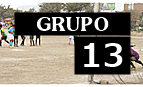 Alfonso Ugarte (San Bartolo), Chacarita Juniors (Canto Grande), Cultural Comas (Comas), Juventud Talana (Surco)