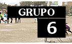 AD Solidaridad (San Martín de Porres), La Esquina del Movimiento (San Miguel), Defensor Striker's Granada (El Agustino), Liga Interna de la V Zona (Collique)