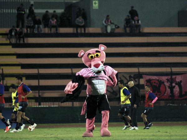 La 'Pantera Rosa' se verá en una encrucijada durante la temporada 2014 de la Segunda División, en la que tanto Boys como Pacífico la tienen de mascota (Foto: Luis Chacón / DeChalaca.com)